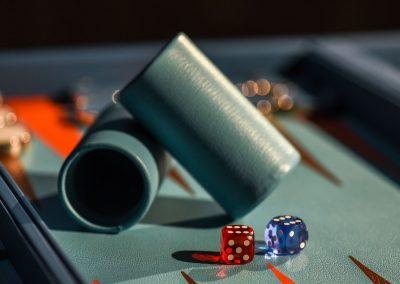 zebrano_backgammon_board_6
